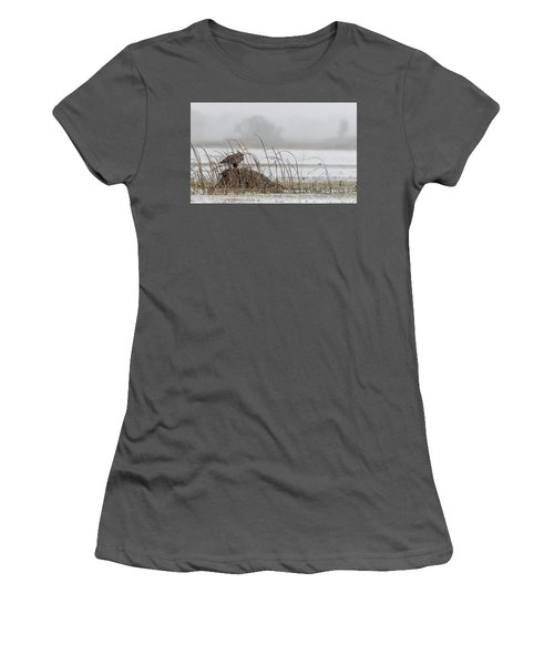 Eagle Hunts For Coots And Ducks Women's T-Shirt (Athletic Fit)