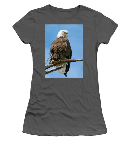 Eagle On Perch Women's T-Shirt (Athletic Fit)