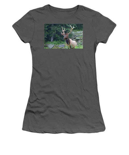 Women's T-Shirt (Athletic Fit) featuring the photograph Elk 4 by Gary Lengyel