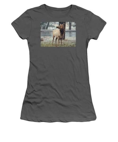 Elk In The Snow Women's T-Shirt (Junior Cut) by Debby Pueschel