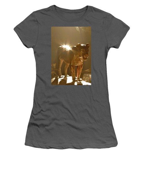 Evening's Light Women's T-Shirt (Athletic Fit)