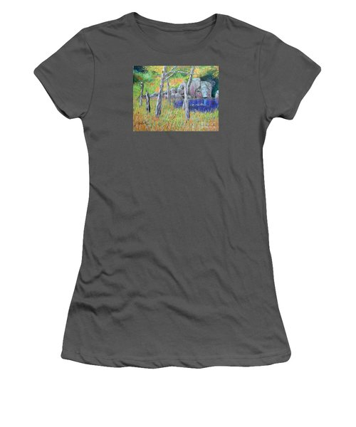 Fall  Along The Highwy  Women's T-Shirt (Athletic Fit)