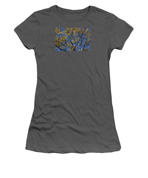 Fall Splendor And Glory Women's T-Shirt (Junior Cut) by Deborah  Crew-Johnson