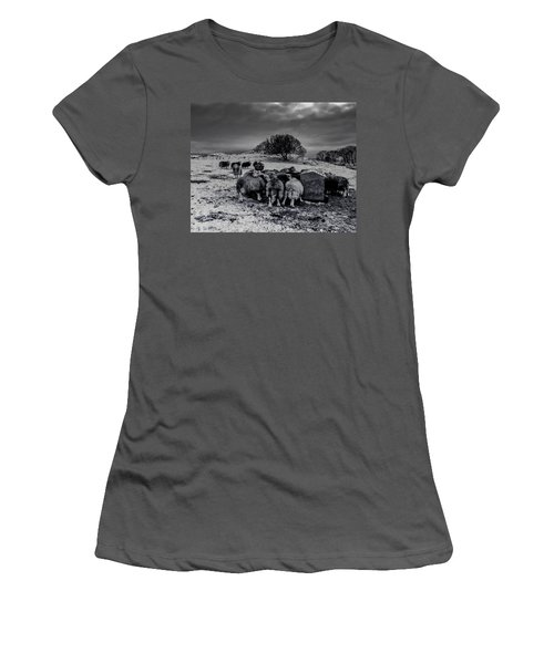 Feeding Time Women's T-Shirt (Athletic Fit)