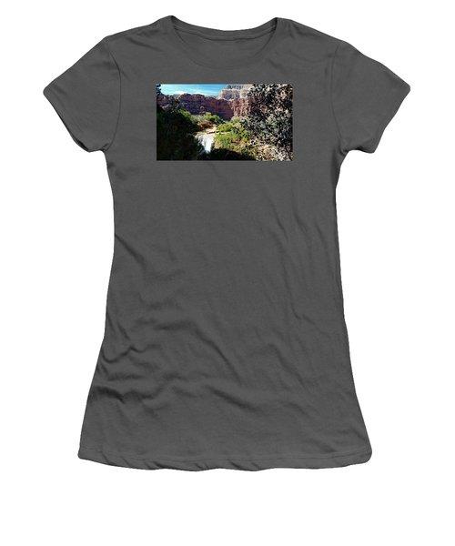 Fifty Falls And Havasupai Falls Havasupai Indian Reservation Women's T-Shirt (Junior Cut) by Joseph Hendrix