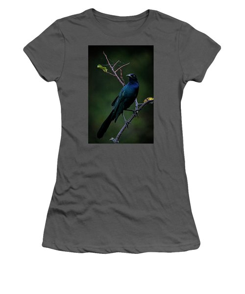 Male Boat-tailed Grackle Women's T-Shirt (Junior Cut) by Cyndy Doty