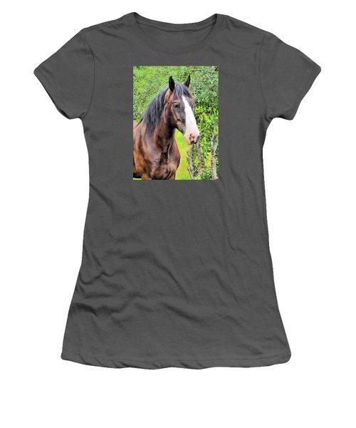 Gentle Soul Women's T-Shirt (Junior Cut) by Elizabeth Dow