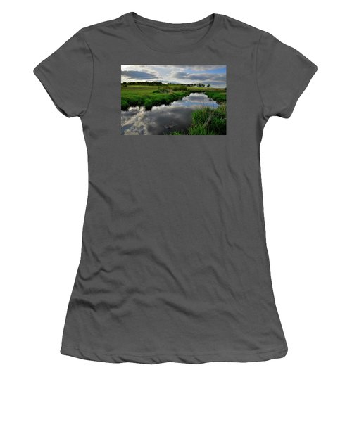 Glacial Park Mirror Image Of Evening Clouds Women's T-Shirt (Athletic Fit)