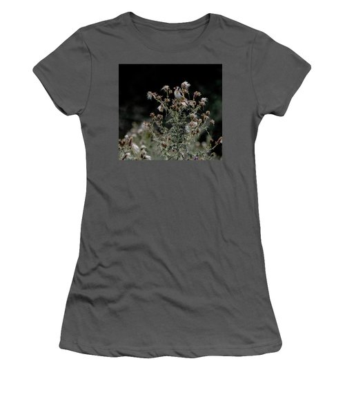 Goldfinch Sitting On A Thistle Women's T-Shirt (Athletic Fit)