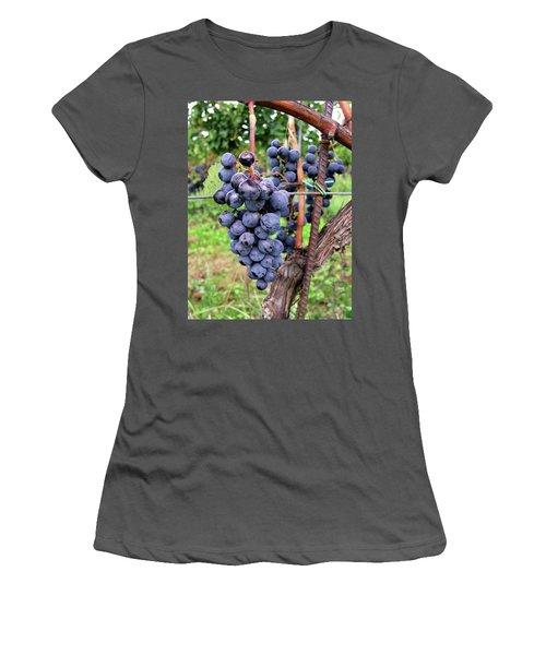 Grape Vine Women's T-Shirt (Athletic Fit)