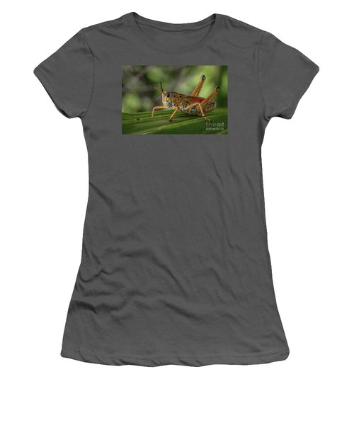 Grasshopper And Palm Frond Women's T-Shirt (Athletic Fit)