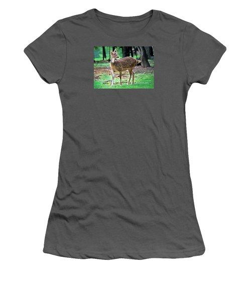 Grazing Women's T-Shirt (Junior Cut) by Marion Johnson