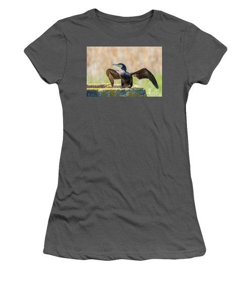 Great Cormorant - Phalacrocorax Carbo Women's T-Shirt (Junior Cut) by Jivko Nakev