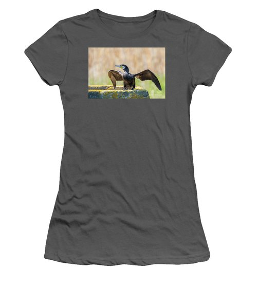 Great Cormorant - Phalacrocorax Carbo Women's T-Shirt (Athletic Fit)