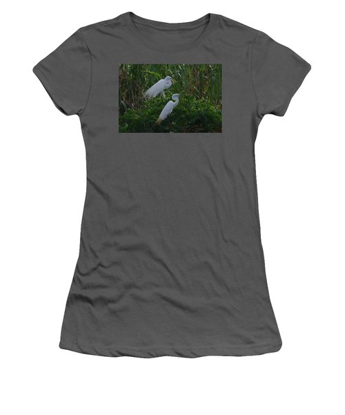 Great Egret Displays Windy Mating Plumage 2 Women's T-Shirt (Athletic Fit)