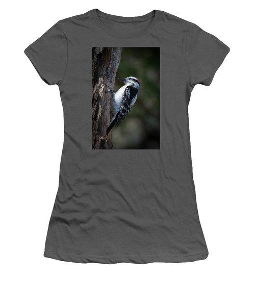 Downy Woodpecker Women's T-Shirt (Junior Cut) by Kenneth Cole