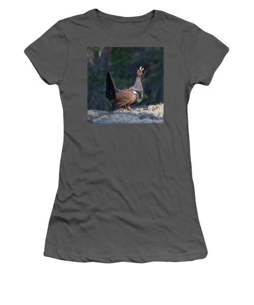Heather Cock In The Morning Sun Women's T-Shirt (Junior Cut) by Torbjorn Swenelius