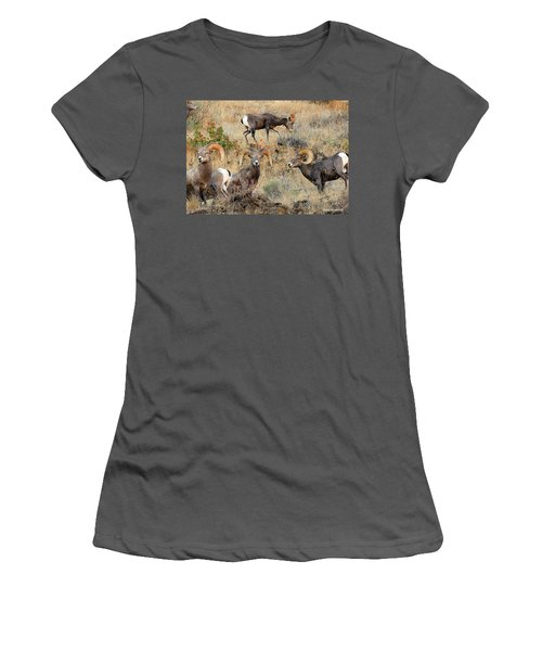 Hierarchy Women's T-Shirt (Athletic Fit)