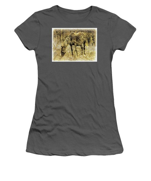 Horse Grazing On Pasture 2 Women's T-Shirt (Athletic Fit)