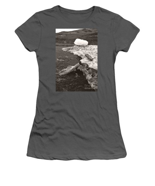 Iceberg Silo Women's T-Shirt (Athletic Fit)