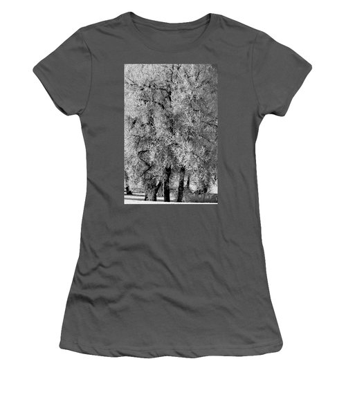 Iced Cottonwoods Women's T-Shirt (Junior Cut) by Colleen Coccia
