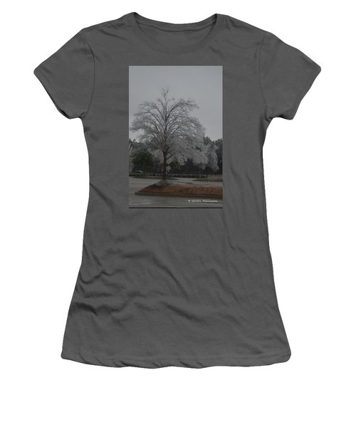 Icy Tree Women's T-Shirt (Junior Cut) by Gordon Mooneyhan