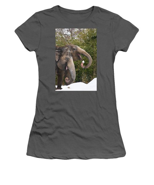 Indian Elephants Eating Snow Women's T-Shirt (Athletic Fit)