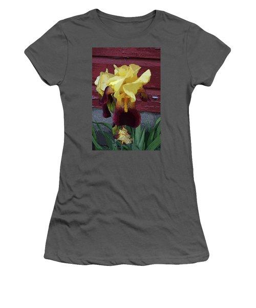 Iris Women's T-Shirt (Athletic Fit)