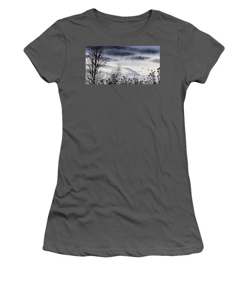 Women's T-Shirt (Junior Cut) featuring the painting Island Solitude by James Williamson