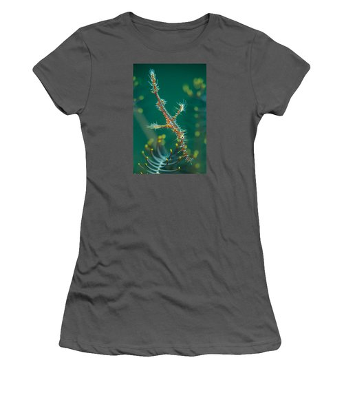 Juvenile Ornate Ghost Pipefish Women's T-Shirt (Athletic Fit)