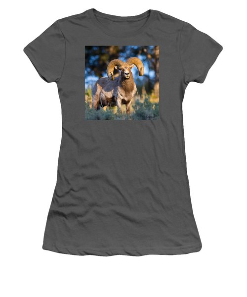 Keeping Watch Women's T-Shirt (Athletic Fit)