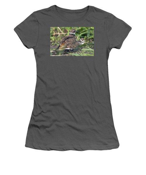 Killdeer With Chicks Women's T-Shirt (Junior Cut)
