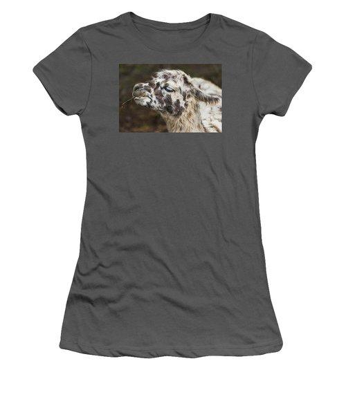 Lady Llama Women's T-Shirt (Athletic Fit)