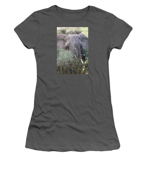 Women's T-Shirt (Junior Cut) featuring the photograph Lake Manyara Elephant by Gary Hall