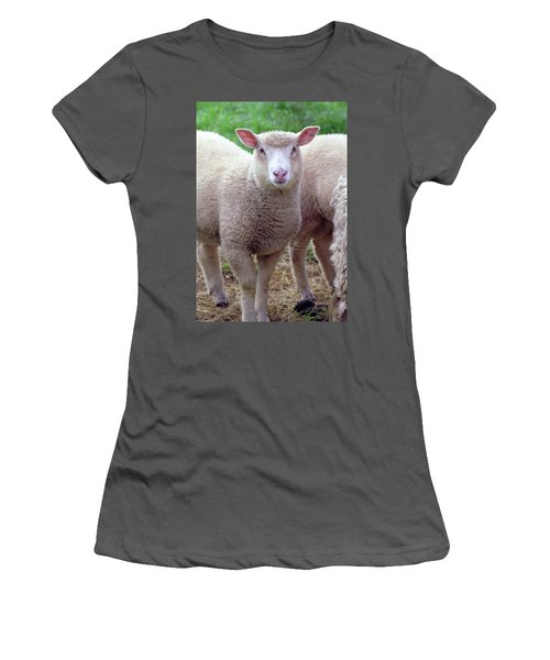 Lamb Women's T-Shirt (Athletic Fit)