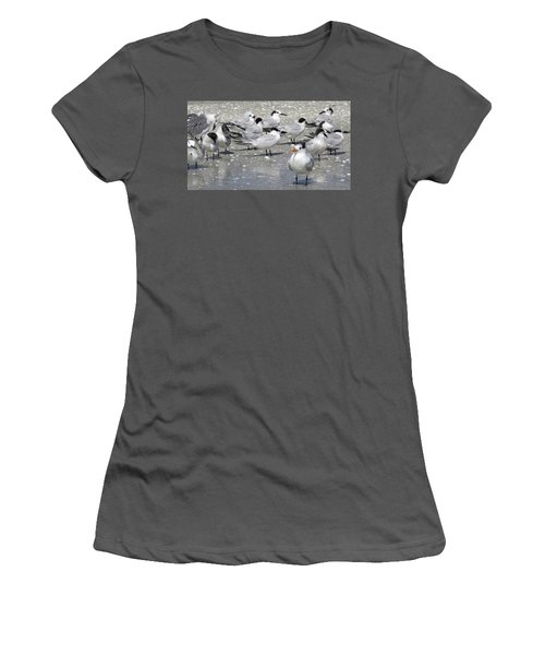 Least Terns Women's T-Shirt (Athletic Fit)