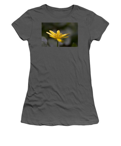 Lesser Celandine Women's T-Shirt (Athletic Fit)