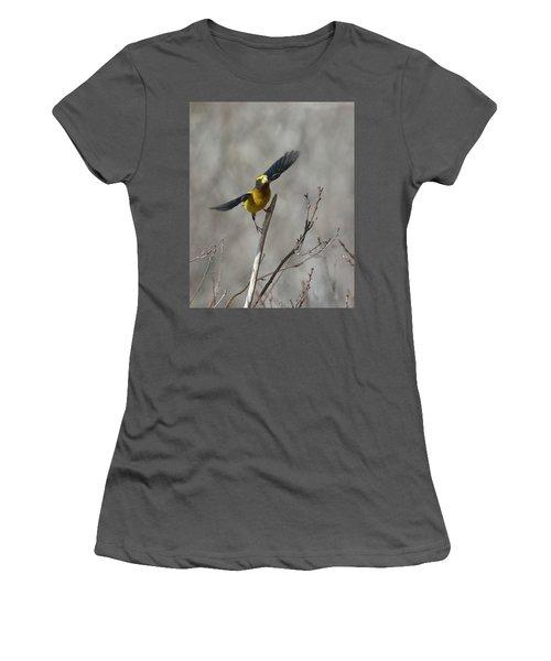 Liftoff-male Evening Grosbeak Women's T-Shirt (Athletic Fit)
