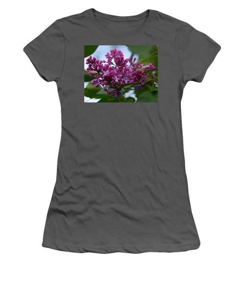 Lilac Buds Women's T-Shirt (Athletic Fit)