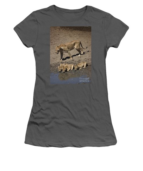 Lion Cubs And Mom Get A Drink Women's T-Shirt (Junior Cut) by Darcy Michaelchuk