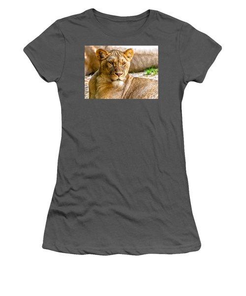 Lioness Women's T-Shirt (Athletic Fit)
