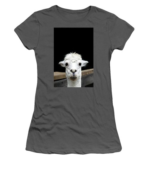 Llama Women's T-Shirt (Junior Cut) by Lauren Mancke