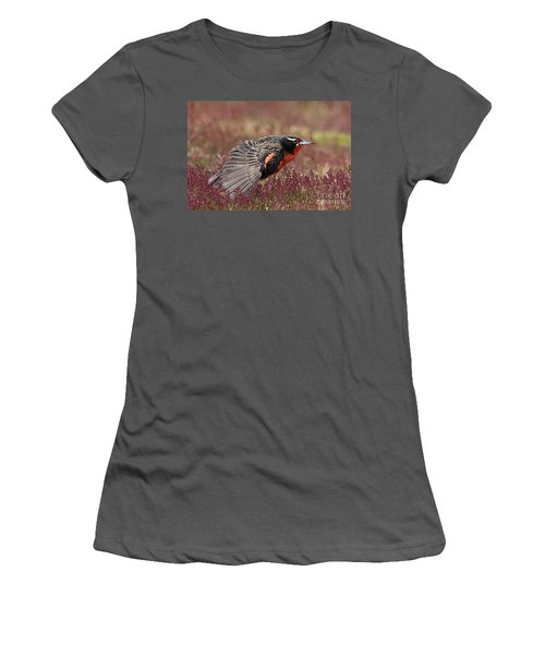 Long-tailed Meadowlark Women's T-Shirt (Athletic Fit)