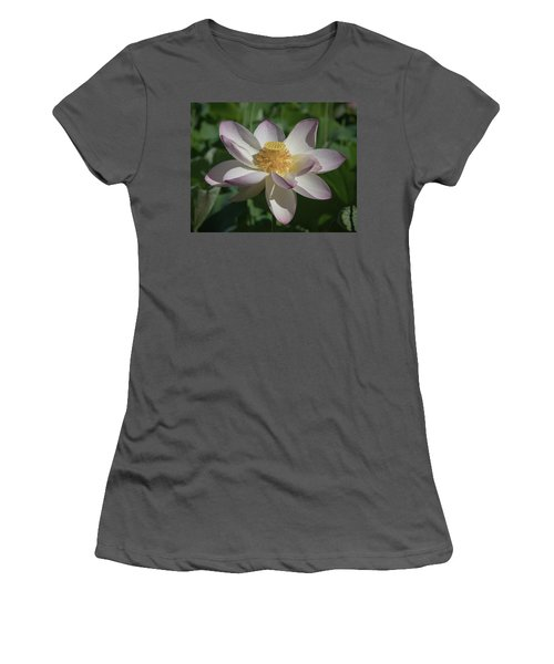 Lotus Flower In Bloom Women's T-Shirt (Athletic Fit)