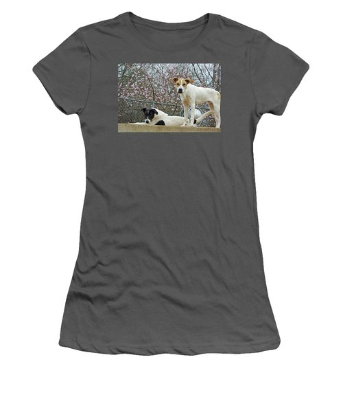 Maddy And Sammy Springtime Women's T-Shirt (Athletic Fit)