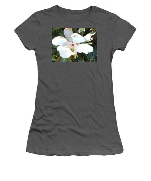 Women's T-Shirt (Junior Cut) featuring the photograph Magnolia Tree Bloom by Debra Crank