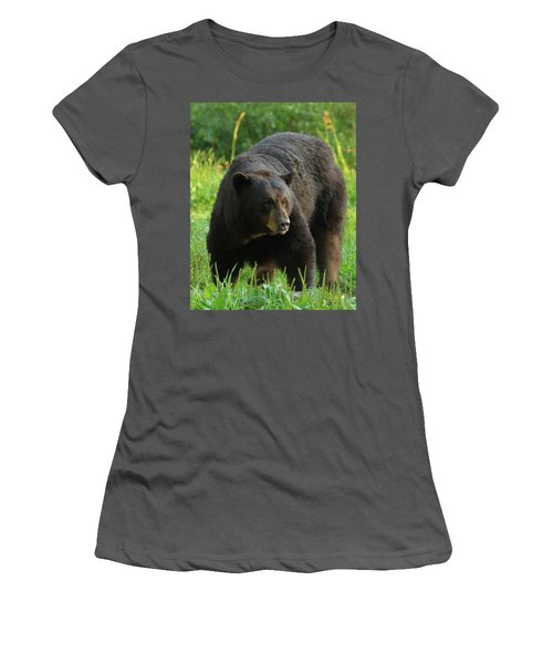 Male Black Bear In Late Light Women's T-Shirt (Athletic Fit)