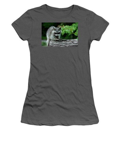 Women's T-Shirt (Junior Cut) featuring the photograph Mischievous by Linda Segerson