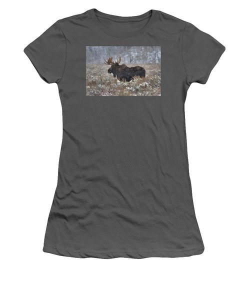 Women's T-Shirt (Junior Cut) featuring the photograph Moose In The Snowy Brush by Adam Jewell