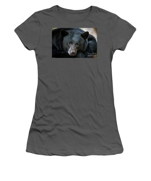 Mother Bear Women's T-Shirt (Junior Cut) by Mitch Shindelbower